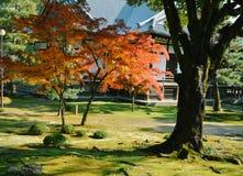 秋天Daikakuji寺庙,京都,日本庭院视图  库存照片