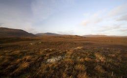 秋天dartmoor横向 免版税库存照片