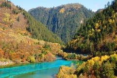 秋天jiuzhaigou湖山结构树 库存照片