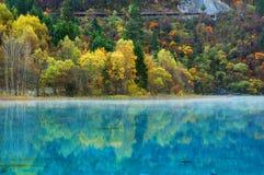 秋天jiuzhaigou湖结构树 库存图片