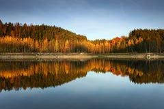 秋天kyiv湖区域乌克兰 图库摄影