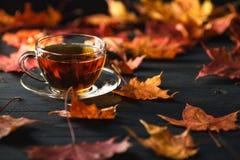 秋季、业余时间和茶计时概念 免版税库存照片