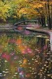 秋季公园河 库存照片