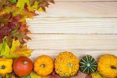 秋季叶子和南瓜在木板说谎 免版税库存图片