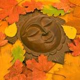 秋季叶子星期日 图库摄影