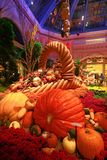 秋季在贝拉焦旅馆音乐学院&植物园里 图库摄影