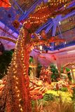 秋季在贝拉焦旅馆音乐学院&植物园里 库存照片