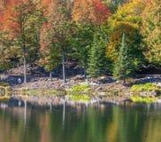 秋季在魁北克,加拿大 免版税库存图片