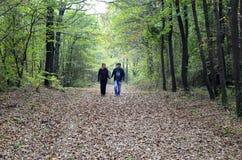 秋季场面 浪漫华伦泰的看的走动 库存照片