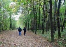 秋季场面 浪漫华伦泰的看的走动 库存图片