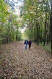 秋季场面 浪漫华伦泰的看的走动 图库摄影