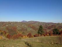 秋季小山 库存图片