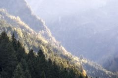 秋季山风景在一个晴朗的10月早晨 库存图片