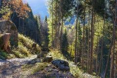 秋季山风景在一个晴朗的10月早晨 免版税库存图片