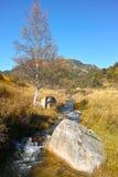 秋季山风景 免版税库存照片