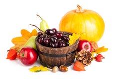 秋季收获水果和蔬菜 免版税库存图片