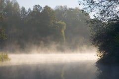 秋季有雾的池塘 库存图片