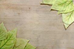 秋季样式-黄色框架在木背景离开 安置文本 免版税库存照片