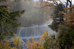 秋季森林和瀑布 免版税库存图片
