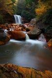 秋季森林瀑布 库存照片