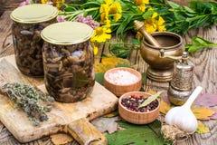 秋季森林用了卤汁泡在玻璃瓶子,盐,在木桌上的香料的蘑菇 图库摄影