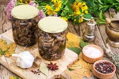 秋季森林用了卤汁泡在玻璃瓶子,盐,在木桌上的香料的蘑菇 库存照片