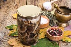 秋季森林用了卤汁泡在玻璃瓶子,盐,在木桌上的香料的蘑菇 库存图片