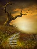 秋季横向台阶 免版税图库摄影
