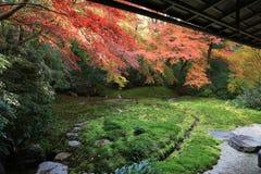 秋季的禅宗庭院在Rurikoin的日本 库存照片