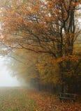 秋季秋天朦胧的横向 免版税库存图片