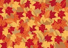秋季背景叶子 图库摄影