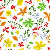 秋季花卉无缝的样式 文本的秋天背景 库存图片