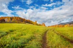 秋季草甸和森林 免版税库存图片