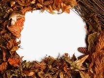 秋季边界 免版税库存图片