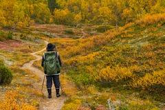 秋季远足者 免版税库存照片