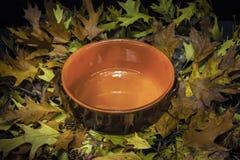 秋季静物画构成:泥罐和色的叶子 免版税库存照片