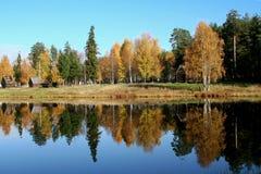 秋季颜色 库存图片
