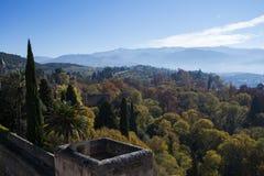 秋季,山的森林 库存照片