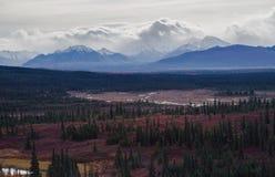 秋季Denali国家公园风景在多云天 免版税库存图片