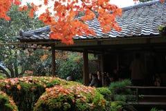 秋季Shisen寺庙 库存照片