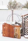 秋明州,俄罗斯- 11月06 2016年:与鸭子的风景设计 免版税库存照片