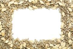种子框架  免版税库存图片
