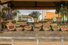种子食物,商展2015年米兰大模型的陈列  免版税库存图片