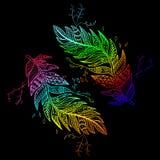 种族装饰品色的鸟羽毛 对T恤杉设计,墙纸,刻记 图库摄影