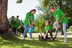 种植一棵树的环境活动家在公园 免版税图库摄影