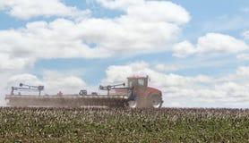 种植在农田 免版税图库摄影