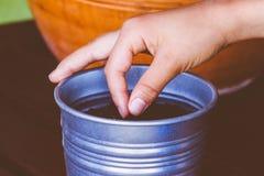 种植在罐的儿童手种子 库存照片