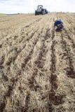 种植在领域的农夫检查 库存照片