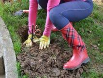种植妇女的庭院 免版税库存图片