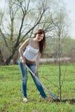 种植春天结构树的花匠 免版税图库摄影